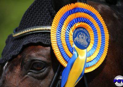 308 : BLUE HORS ZACK : MERRALD Nanna Skodborg DEN